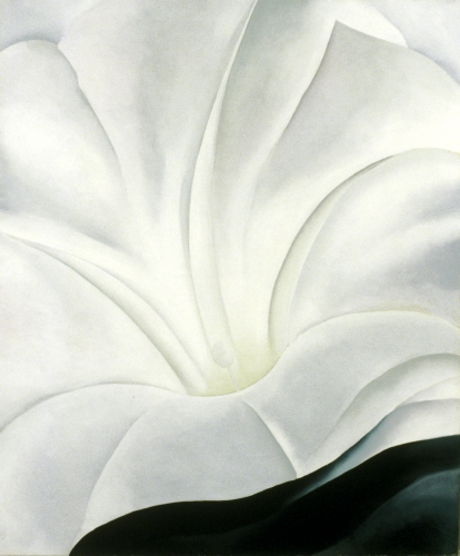 Georgia O'Keeffe, Morning Glory with Black I, 1926.