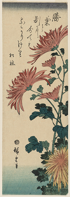 Utagawa Hiroshige I (1797–1858, Japan), Chrysanthemums, from a Flowers and Birds series, 1843–1847.