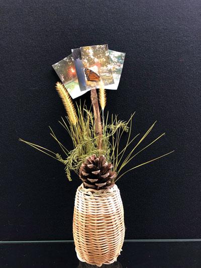 Weaving Nature into the Art Room | Davis Publications