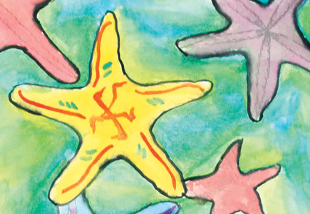 Starfish: Ocean Treasures